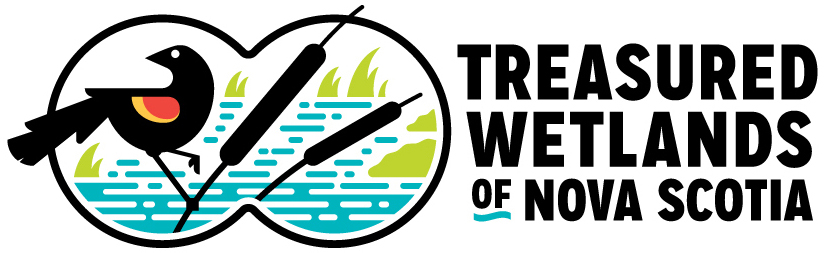 TWNS-logo2-web